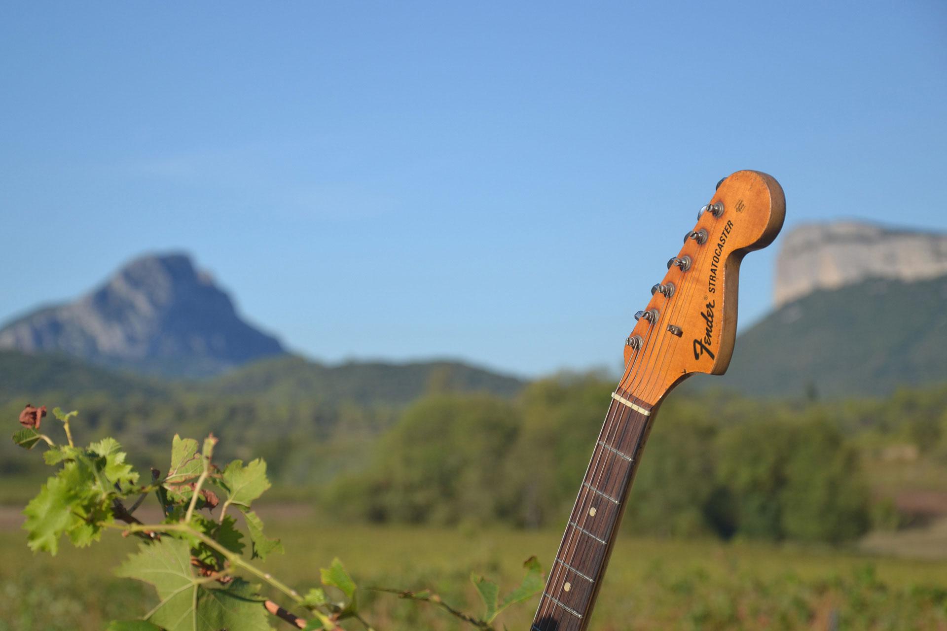 Guitare dans un champ de vignes du Pic Saint Loup pour le festival musique & vins du Festapic